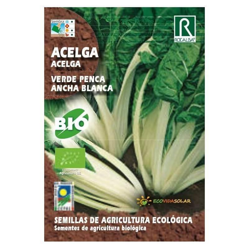 Semillas de Acelga bio penca ancha y blanca - Rocalba