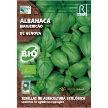 Semillas de Albahaca de Génova bio - Rocalba