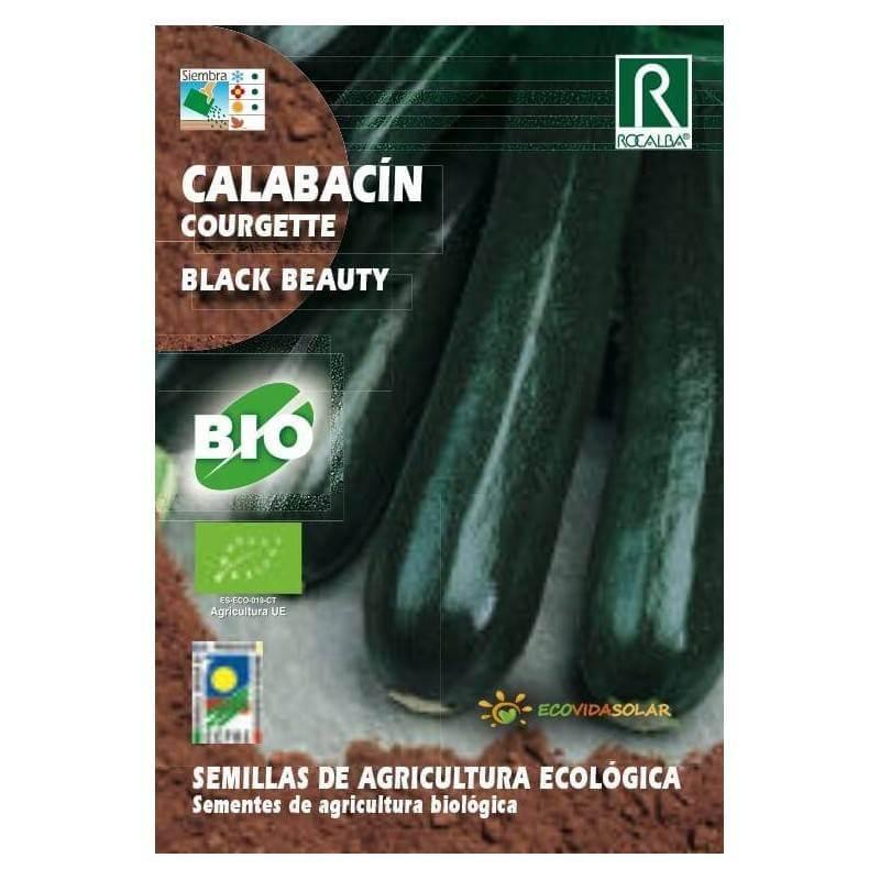 Semillas de Calabacín bio black beauty -Rocalba