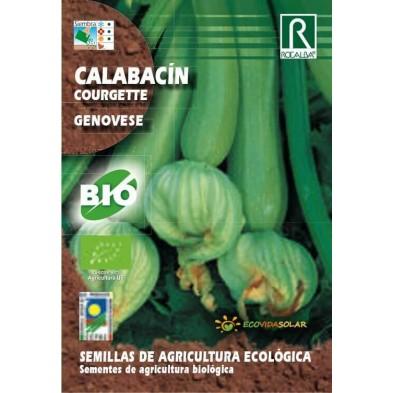 Semillas Ecológicas de calabacín bio genovese - Rocalba