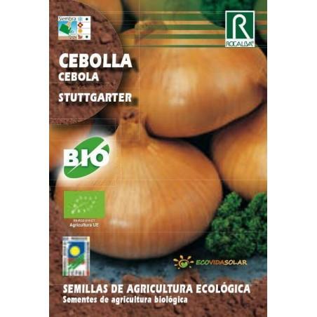 Semillas Ecológicas de Cebolla stuttgarter - Rocalba