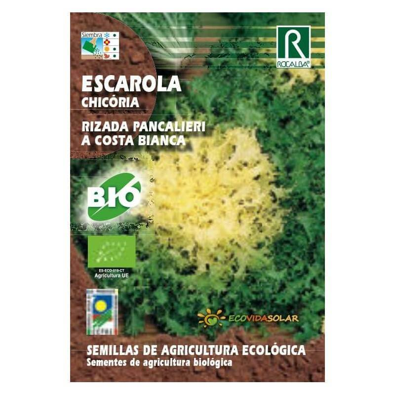 Semillas de Escarola  - Rocalba