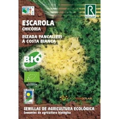 Semillas de Escarola bio - Rocalba