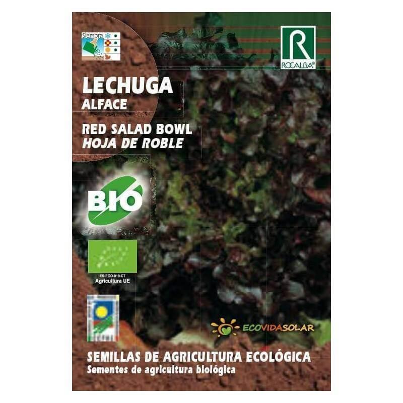 Semillas de lechuga hoja de roble bio - Rocalba