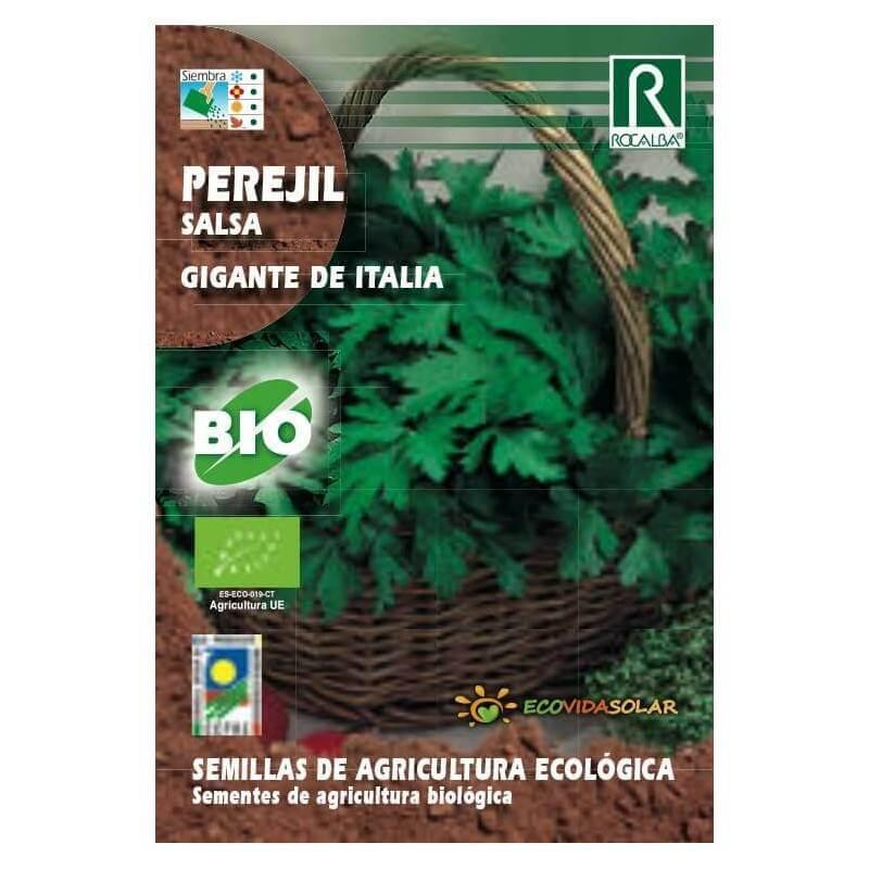 Semillas de Perejil gigante bio - Rocalba