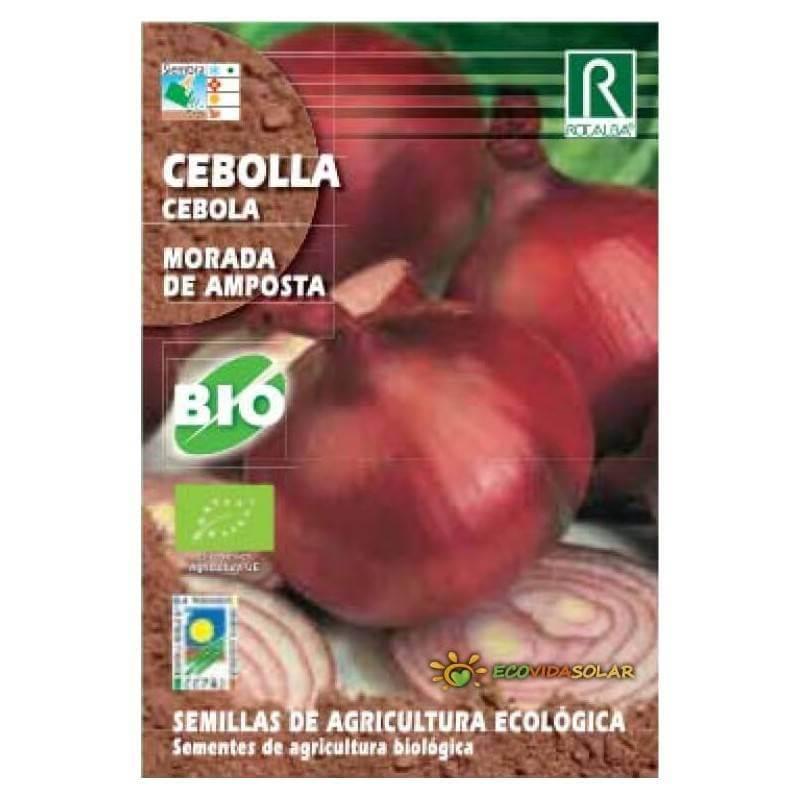 Semillas de Cebolla Morada - Rocalba