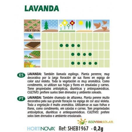 Semillas-lavanda-bio-Rocalba-Ecovidasolar-
