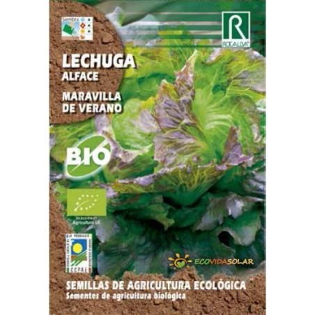 Semillas de lechuga maravilla de verano bio - Rocalba
