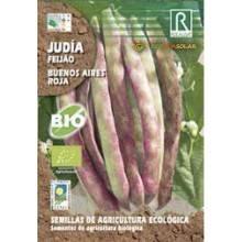 Semillas de judía buenos aires roja bio - Rocalba