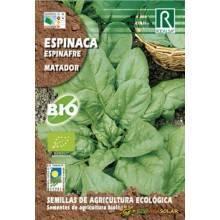 Semillas-espinaca-espinafre-matador-bio-Rocalba-Ecovidasolar