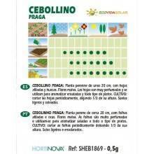Semillas-cebollino-praga-bio-Rocalba-Ecovidasolar