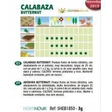 Semillas-calabaza-butternut-bio-Rocalba-Ecovidasolar