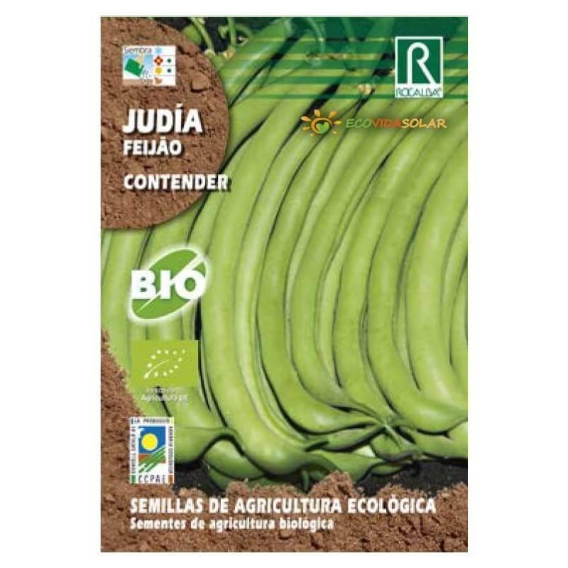Semillas-judia-contender-bio-Rocalba-Ecovidasolar