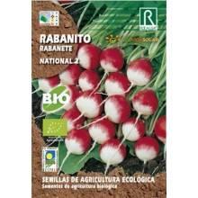 Semillas-rabanito-national-2-bio-Rocalba-Ecovidasolar