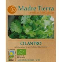 Semillas de cilantro - Madre Tierra