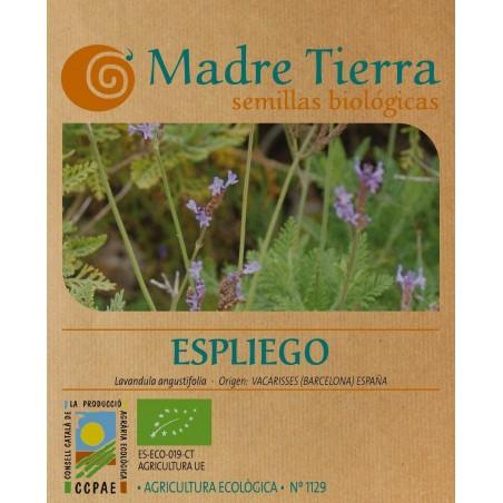 Semillas de espliego bio - Madre Tierra