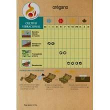 Semillas de orégano - Madre Tierra - Ecovidasolar