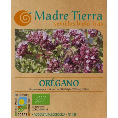 Semillas de orégano - Madre Tierra