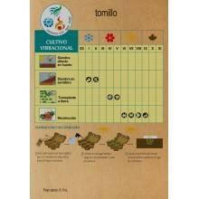Semillas de tomillo bio - Madre Tierra - Ecovidasolar