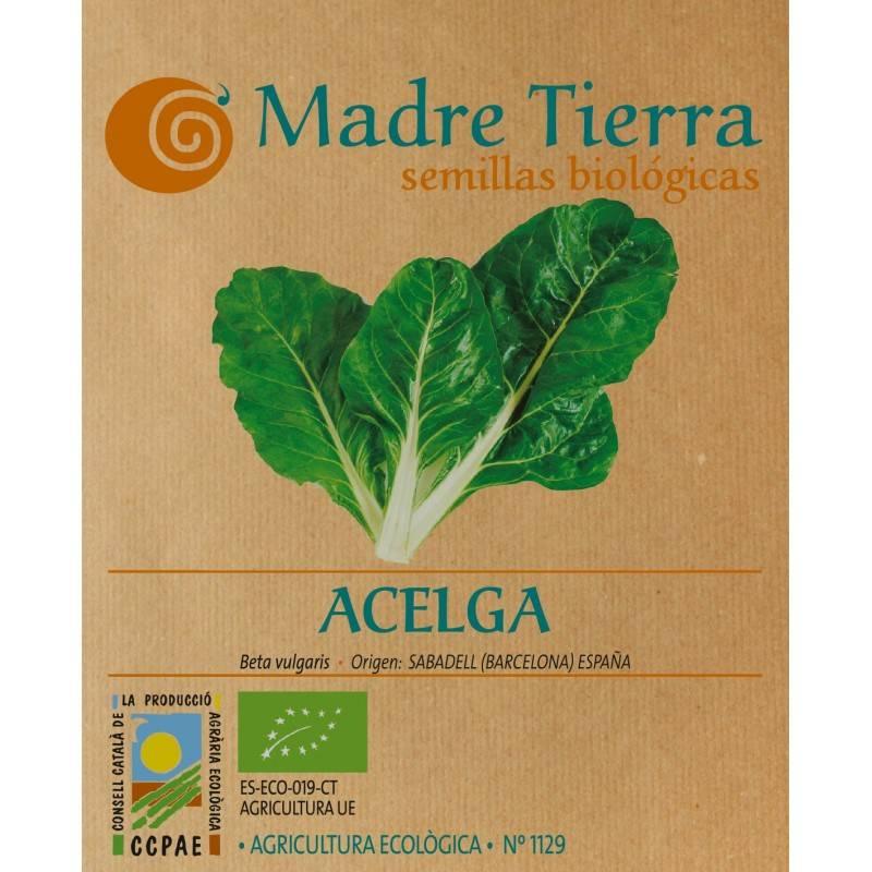 Semillas de acelga bio - Madre Tierra - Ecovidasolar