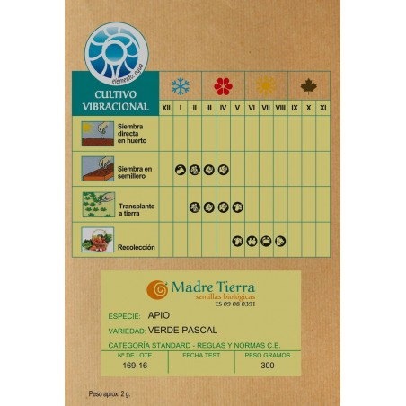 Semillas de apio ecológica - Madre Tierra - Ecovidasolar