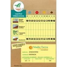 Semilla de zanahoria morada bio - Madre Tierra - Ecovidasolar