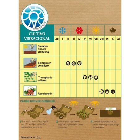 Semillas de tabaco hopi - Madre Tierra - Ecovidasolar