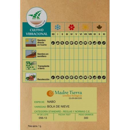 Semillas de nabo - Madre tierra - Ecovidasolar