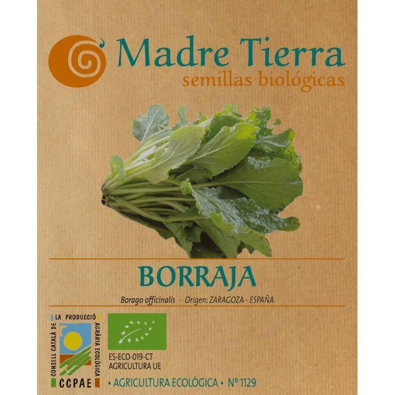 Semillas de borraja - Madre tierra - Ecovidasolar