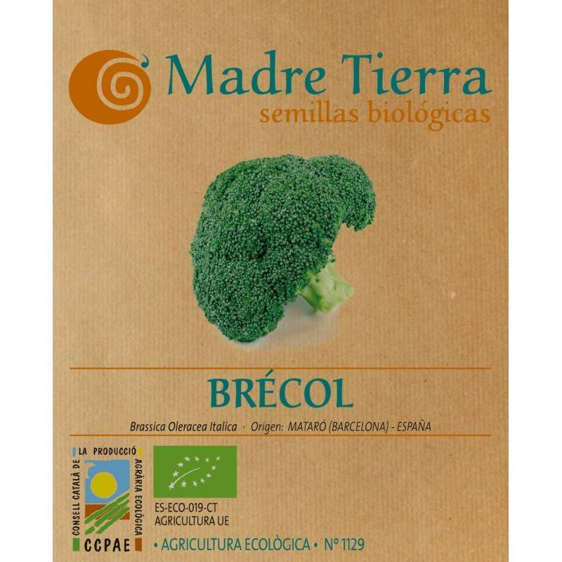 Semillas de brócoli - Madre tierra - Ecovidasolar