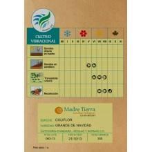 Semillas coliflor- Madre tierra - Ecovidasolar