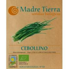 Semillas cebollino - Madre tierra - Ecovidasolar