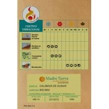 Semillas ecológicas de calabaza de guisar - Madre tierra - Ecovidasolar