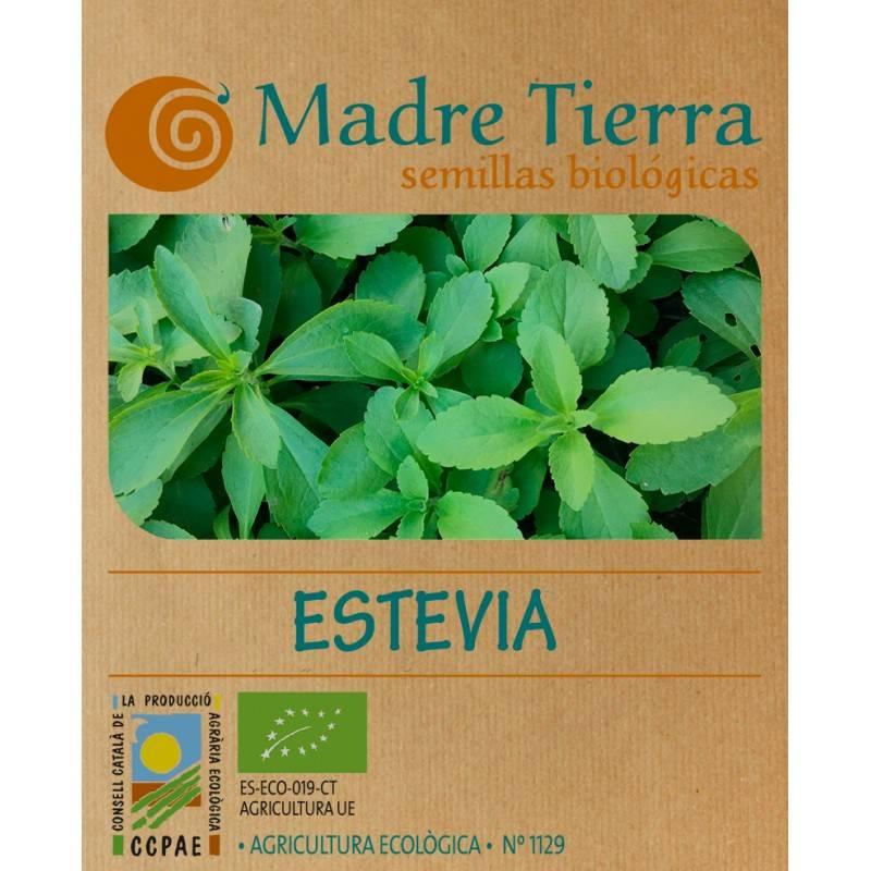 Semillas ecologica de Stevia de Madre tierra