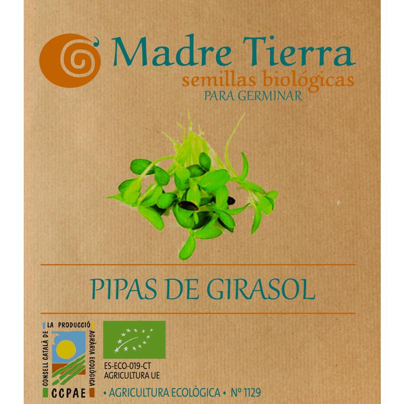 Semillas pipas de girasol para germinar - Madre tierra - Ecovidasolar