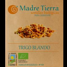 Semillas de trigo blando para germinar - Madre tierra - Ecovidasolar
