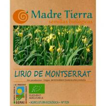 Semillas ecológicas Lirio de Montserrat - Madre tierra